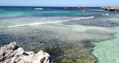 Rottnest Island: More than just beaches