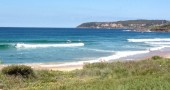 I Love My Neighborhood: Sydney's Northern Beaches