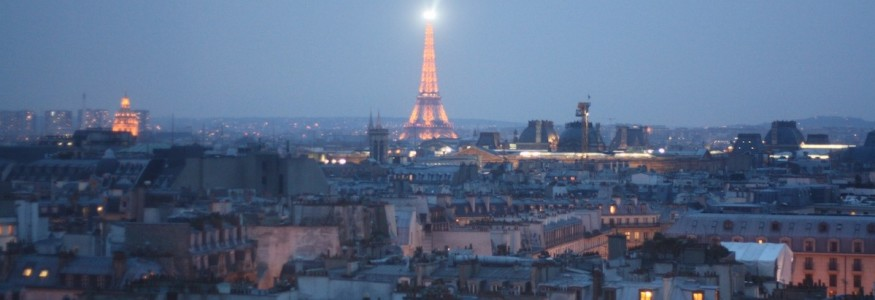 Paris from Above - Expat Edna