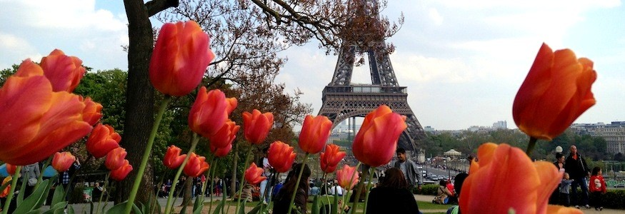 Paris in Bloom photo essay