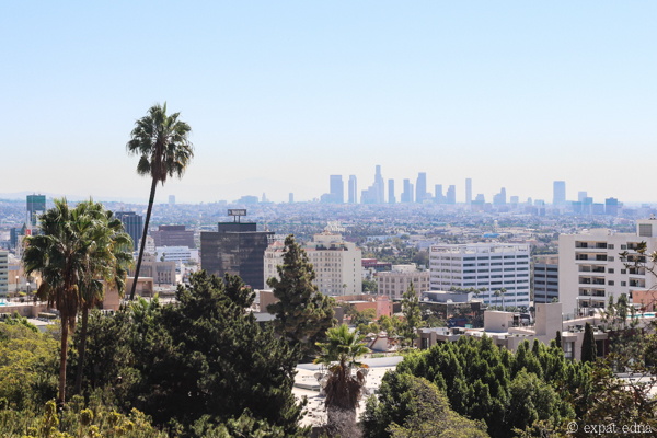 Palm trees over LA by Expat Edna