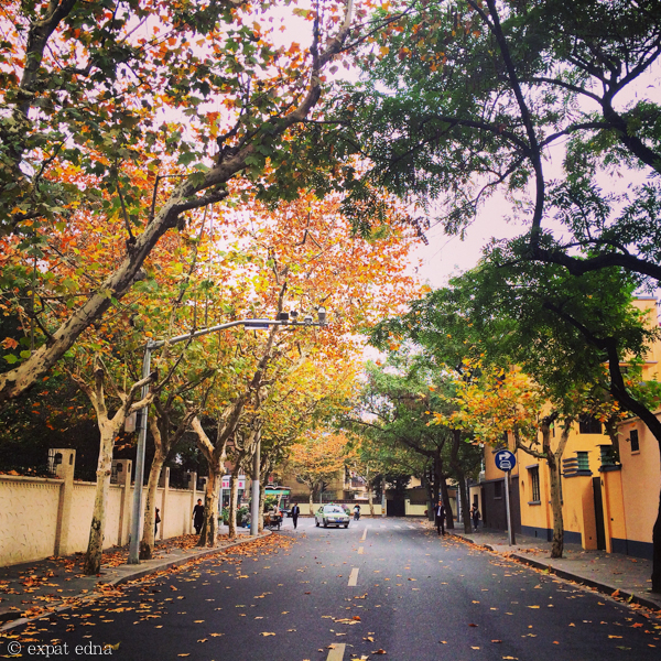 French Concession, November 2014 by Expat Edna