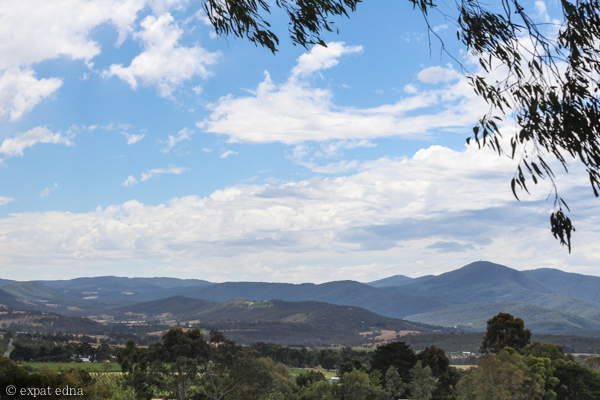 Coldstream Hills - Yarra Valley Wine Tour Melbourne by Expat Edna