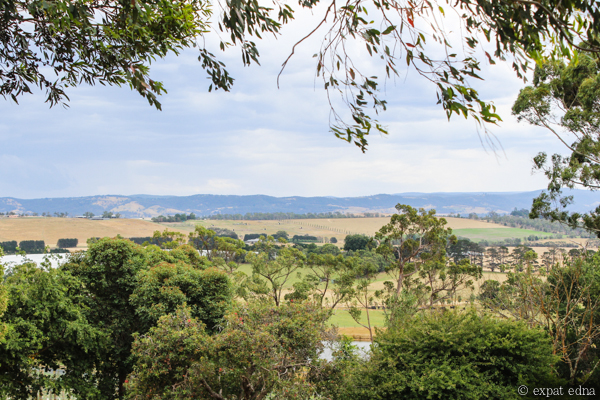 Coldstream Hills view - Yarra Valley Wine Tour Melbourne by Expat Edna
