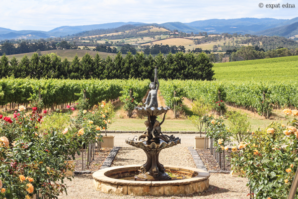 Tokar Estate vineyards - Yarra Valley Wine Tour Melbourne by Expat Edna-3