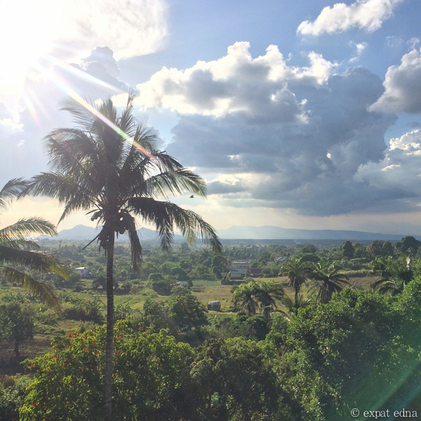Palm tree view, Tagaytay, Philippines by Expat Edna