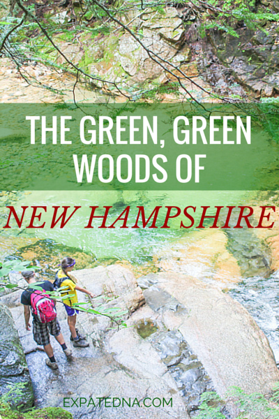 The Green, Green Woods of New Hampshire by ExpatEdna.com