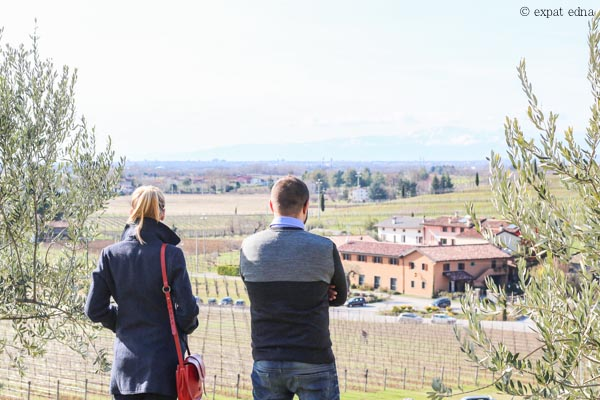 Bastianich Vineyards, Italy by Expat Edna